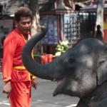 Thai Elephant Show and handler