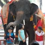 09_elephant_patting_boy_on_head