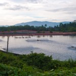 11 shrimp farm thailand ranong