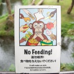 Sign – No Feeding Singapore Zoo