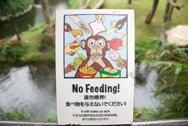 No Feeding!!!!!